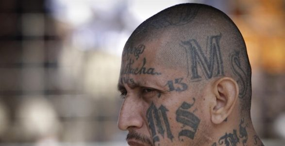 DOJ Releases New Numbers: One-in-Five Federal Prisoners Are Foreign Born, Most Illegal Aliens.