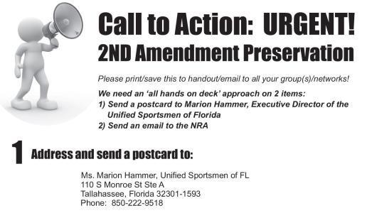 FLORIDA SECOND AMENDMENT PRESERVATION ACT