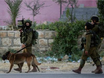 Kidnapped Israeli Teens Found Dead, Israeli Cabinet in Emergency Meeting