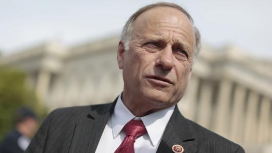 Steve King: Obama 'importing millions' of illegal immigrants to boost Dem vote