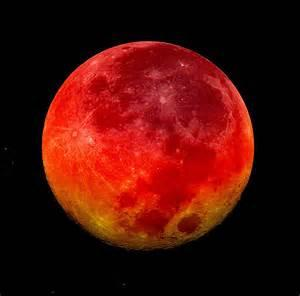 Israeli Rabbi Predicts Blood Moon Judgment