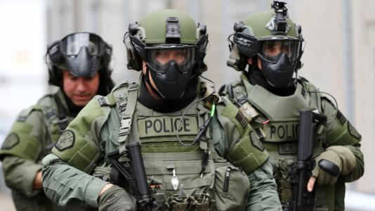 Strong Cities Network Plan for Globally Controlled Police