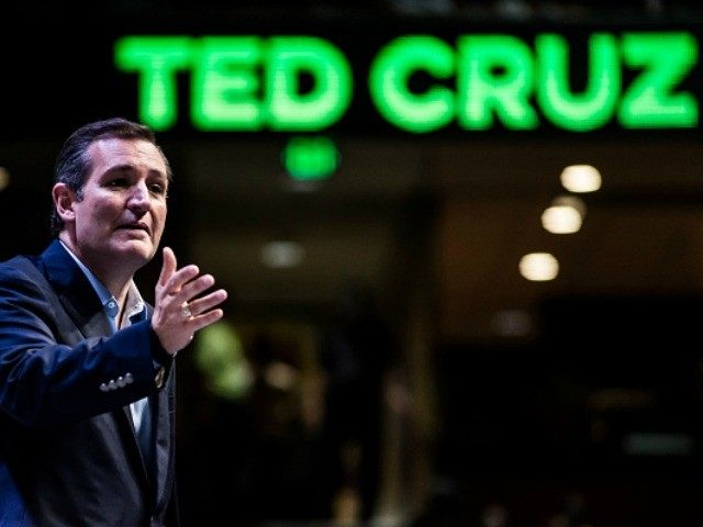 Exclusive–Bozell: It's Time To Rally Around Ted Cruz