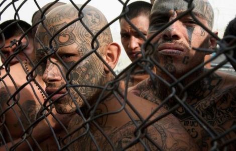 Illegal alien criminals must be released after 6 months?