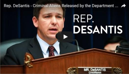 CRIMINAL ALIENS RELEASED BY THE DEPARTMENT OF HOMELAND SECURITY