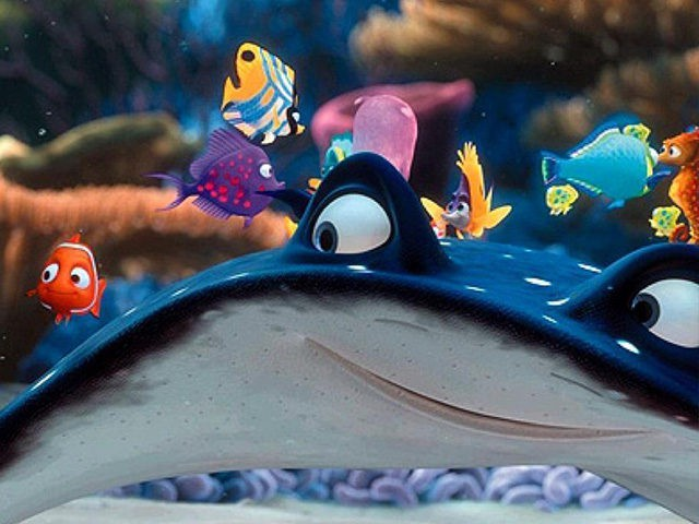 Ellen DeGeneres: Transgender Stingray in Disney's 'Finding Dory'