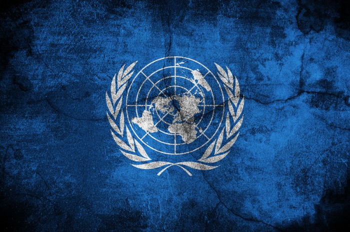 This United Nations Usurp of America Will Boil Your Blood! Their Agenda Just Got a Green Light!