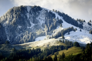 Alps surprised by early snowfall; New record…