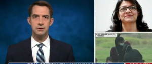 Sen. Tom Cotton Goes Off On Rep. Rashida Tlaib For Saying We Must Eliminate Funding For CBP, ICE, DHS