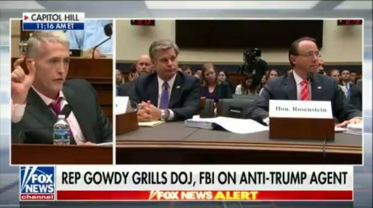"""Finish it The Hell Up!"" Gowdy Tells Rosenstein to Show Evidence of Wrongdoing by Trump's Camp or End Mueller Probe (VIDEO)"
