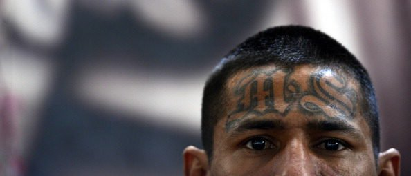 Member Of MS-13 Nicknamed 'Animal' Sentenced To 40 Years In Prison.