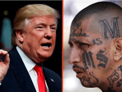 Trump Targets MS-13 'Infestation': ICE Will 'Get Them Out'