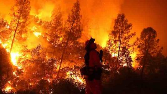 California Wildfires Caused By Radical Environmentalists, Not Climate Change