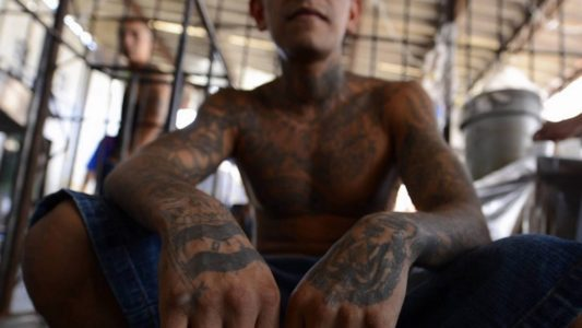 Obama admin let MS-13 gang members into US after they were captured at border, documents state – VIDEO