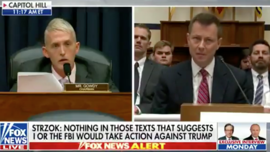 WATCH: Strzok Says His Texts Didn't Mean He Was Targeting Trump. Gowdy Destroys Him.