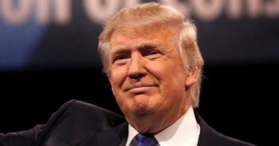Gorka: O'Keefe CNN Video Fake News Scandal 'Complete Vindication for the President' – AUDIO